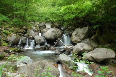 Slide: Photo of a plunge pool in a mountain stream