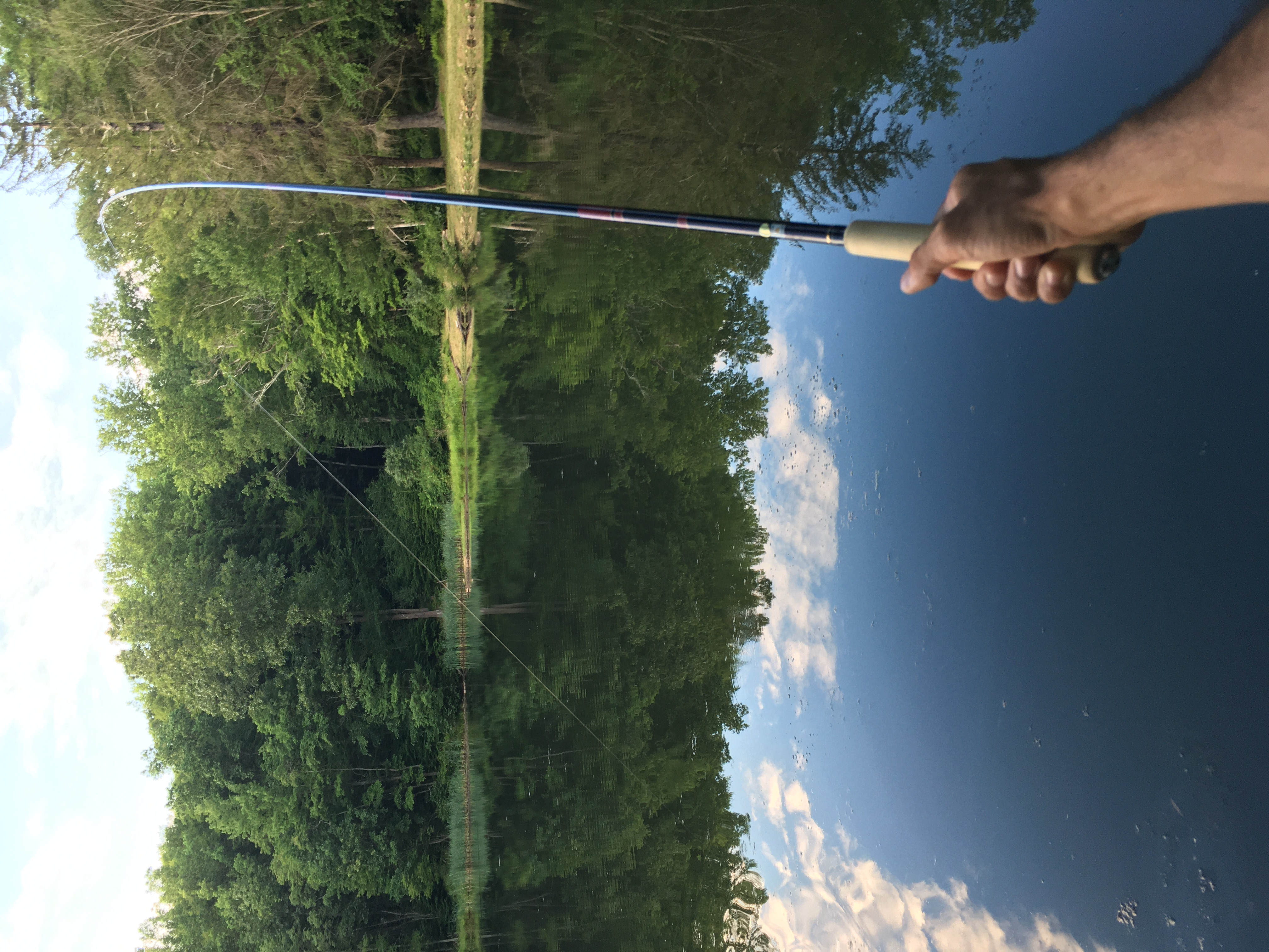Fujiryu tenkara rod bend with pond in background