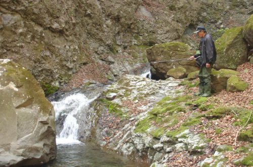 Slide: Photo of Japanese angler fishing small pool at the base of a small waterfall