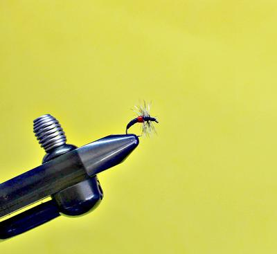 The hackle is palmered forward, and the fly is whip finished at the eye.