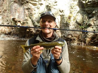 Pink salmon for Lake superior salmon fishing