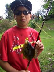 pumpkinseed sunfish - dre