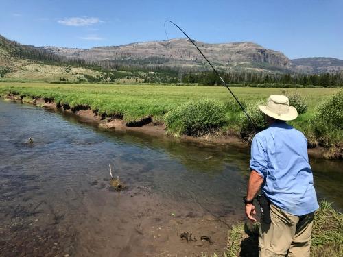 Angler fishing meadow stream, rod bent.