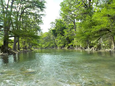 From Scotland's Streams to the Guadalupe River in Texas, Stewart's Black Spider is a Proven Producer