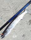 Fixed Line Barracuda