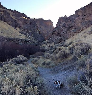 Frankie and me up the Canyon