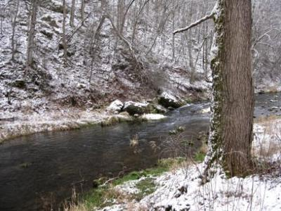 Winter Tenkara Fishing at Whitewater State Park, SE Minnesota