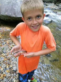 Wyatt's brook trout