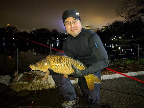 Angler holding carp caught at night