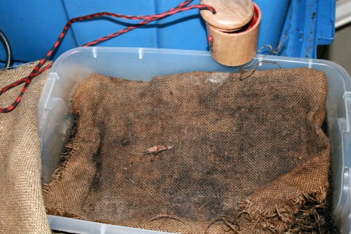 Worm bin with burlap cover