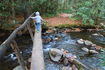 Wyatt crossing a bridge on Bradley Fork