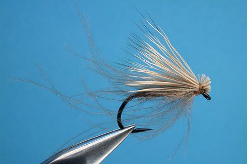 CC & Elk fly