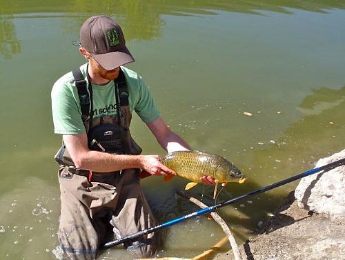 Angler holding carp caught with a Daiwa Kiyose 53MF