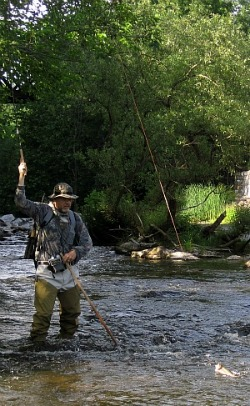 Angler in stream, rod held high, bring in trout. Bright line is easily visible.