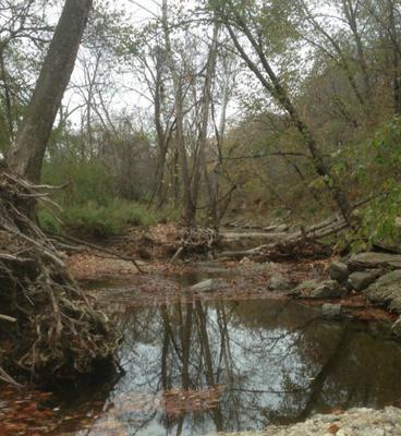 Little Mill Creek