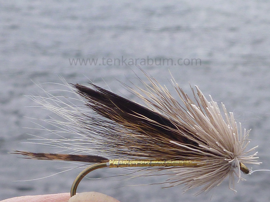 Don Gapen style Muddler Minnow (no closely clipped head)