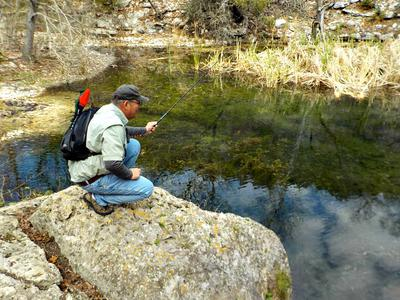 Searching for Guadalupe Bass in a Texas Hill Country Stream