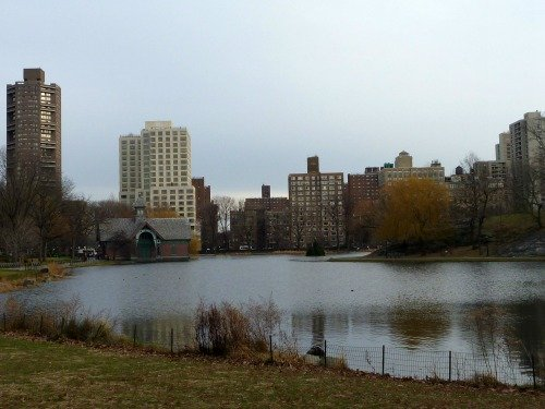 The Harlem Meer in Central Park.