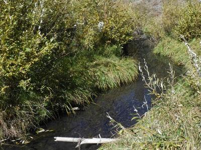 Headwater Creek