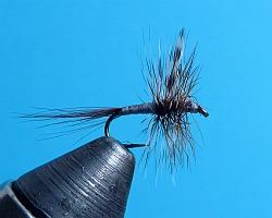 Adams dry fly in vise