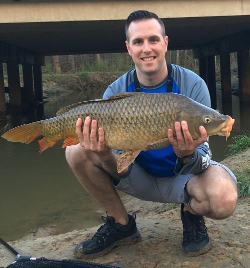 Angler holding large carp