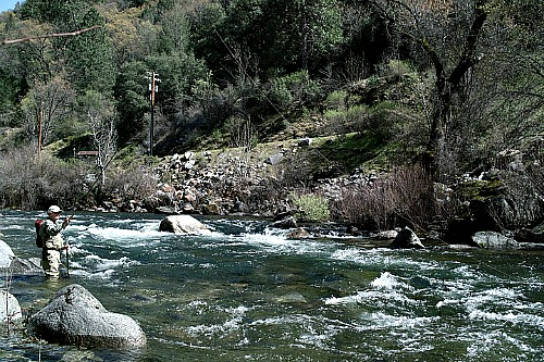 Angler fishing a long line downstream