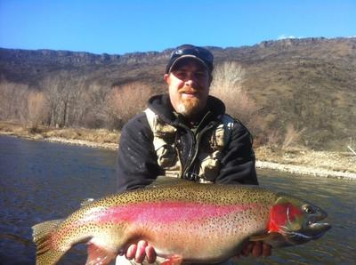 Kyle's monster trout