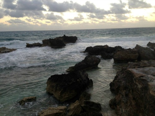 Rocky shore and surf