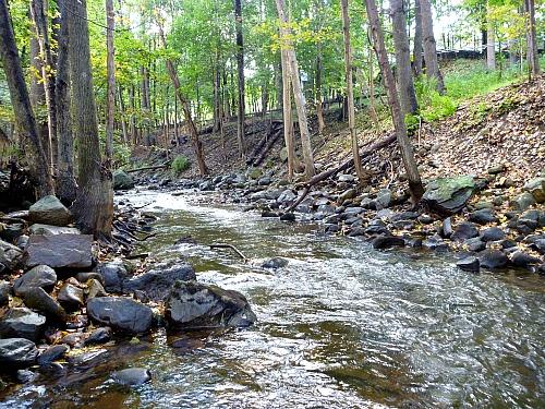 Small Stream Pesca Mosca Valsesiana