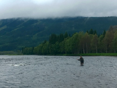 Angler fishing in middle of wide river.