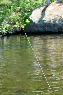 TenkaraBum Tactical Nymphing Sighter with fish on the line.