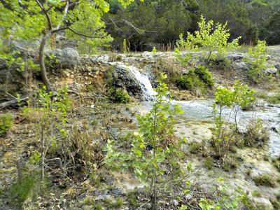 Along the way I found beautiful little waterfalls . . .